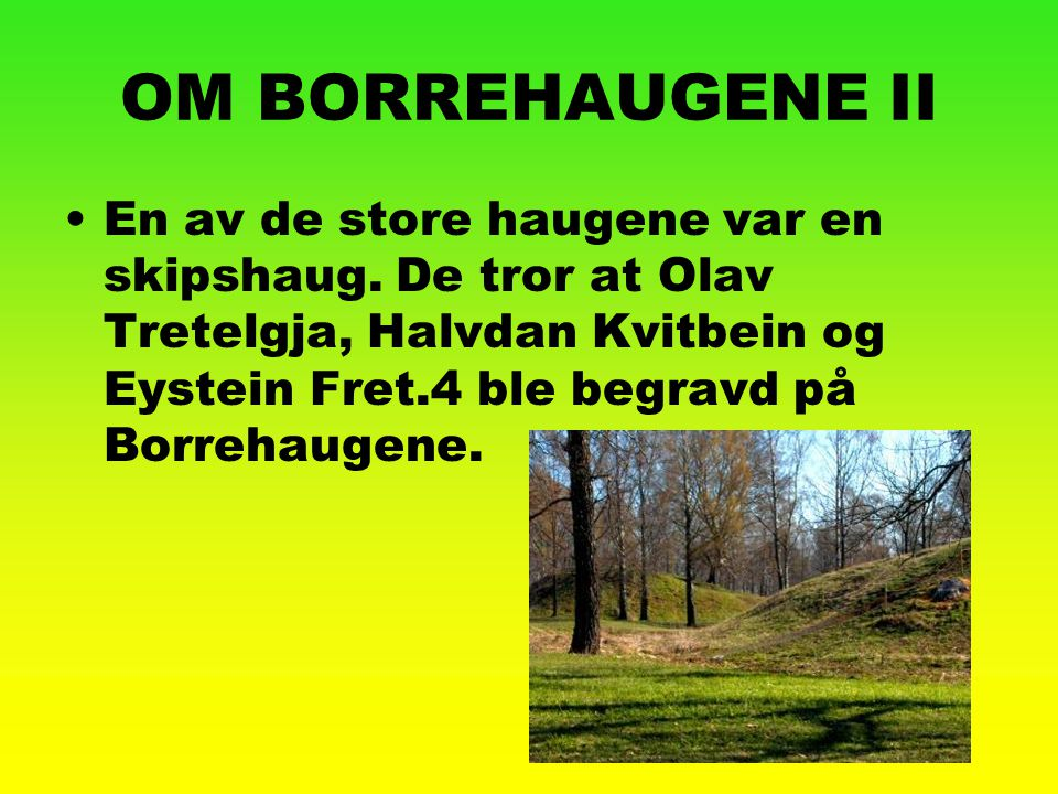 OM BORREHAUGENE II