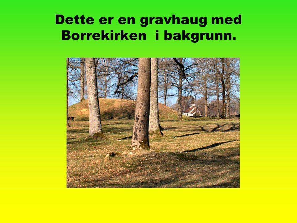 Dette er en gravhaug med Borrekirken i bakgrunn.