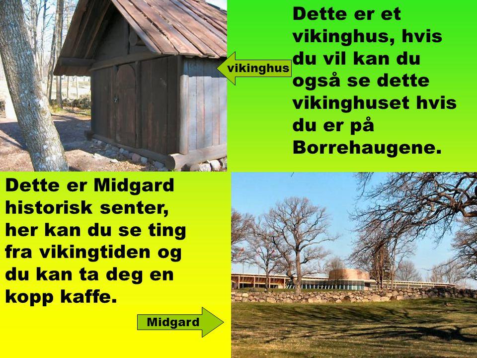 Dette er et vikinghus, hvis du vil kan du også se dette vikinghuset hvis du er på Borrehaugene.