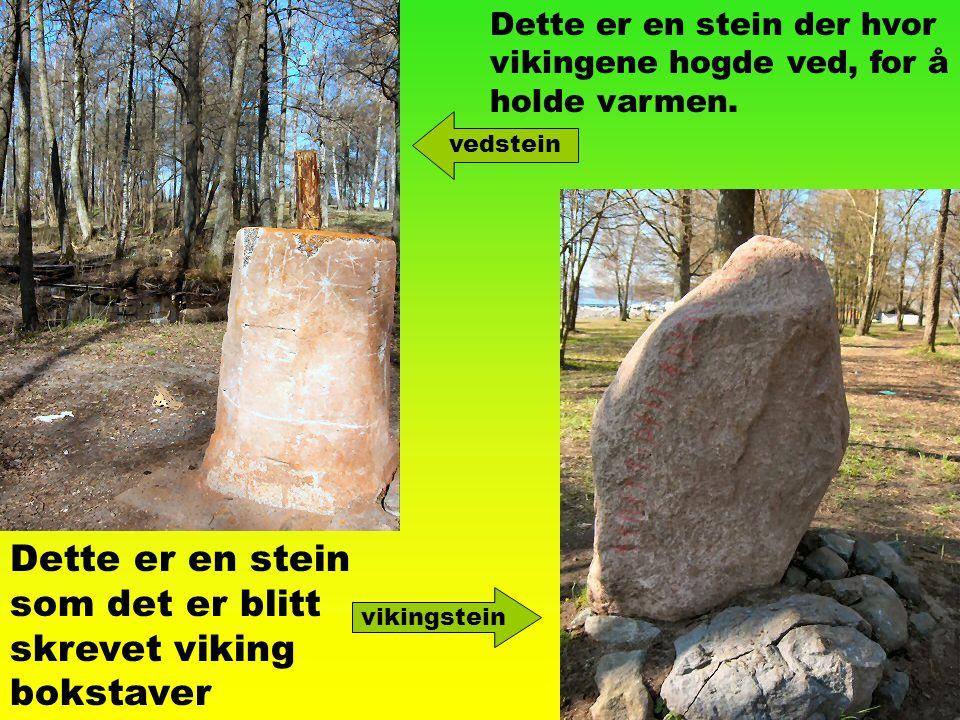 Dette er en stein som det er blitt skrevet viking bokstaver