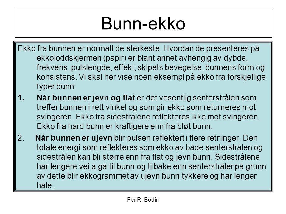 Bunn-ekko