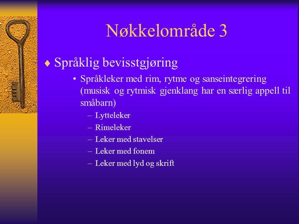Nøkkelområde 3 Språklig bevisstgjøring