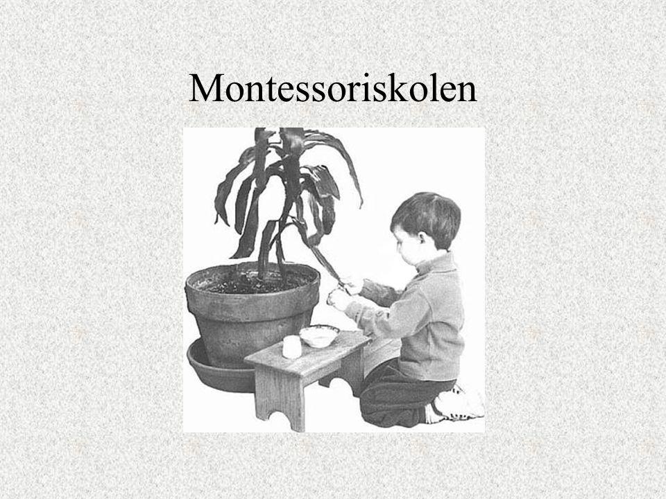 Montessoriskolen