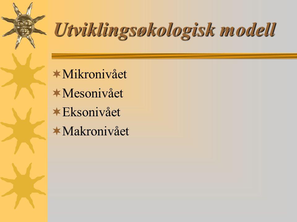 Utviklingsøkologisk modell