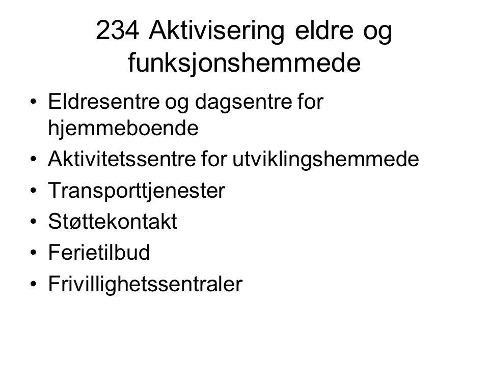 234 Aktivisering eldre og funksjonshemmede