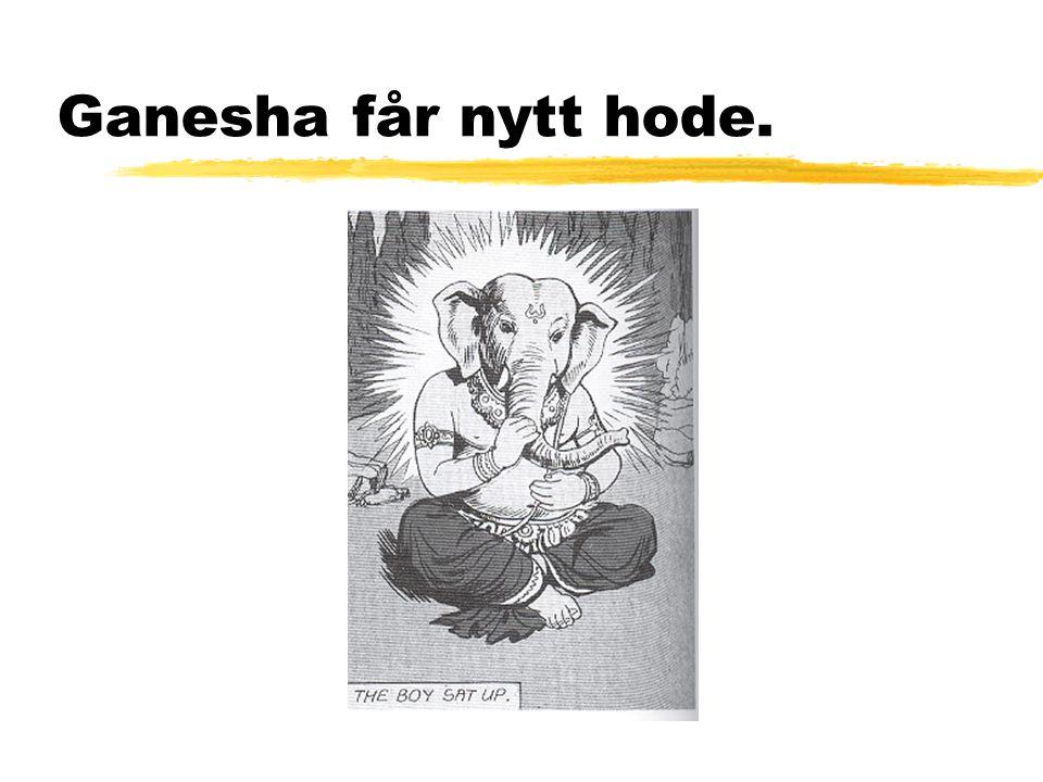 Ganesha får nytt hode.
