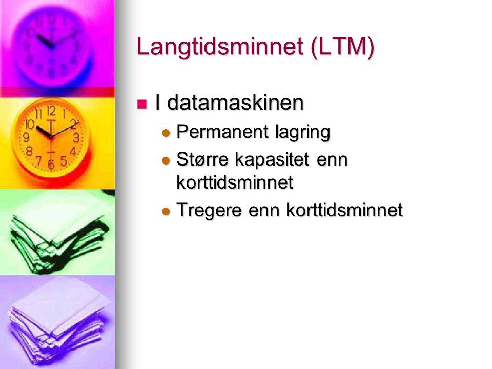 Langtidsminnet (LTM) I datamaskinen Permanent lagring