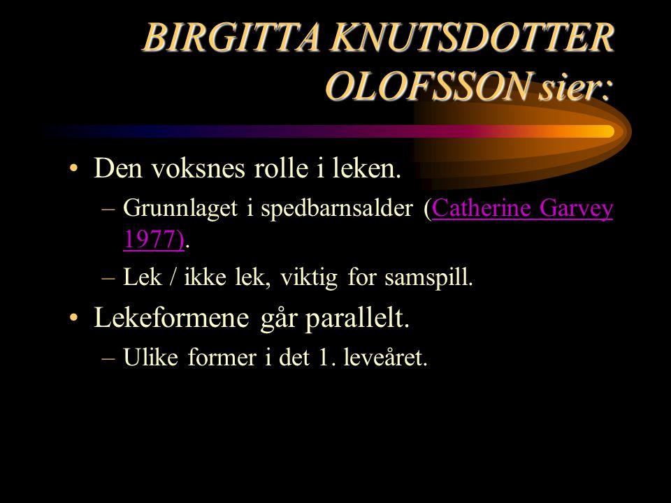 BIRGITTA KNUTSDOTTER OLOFSSON sier: