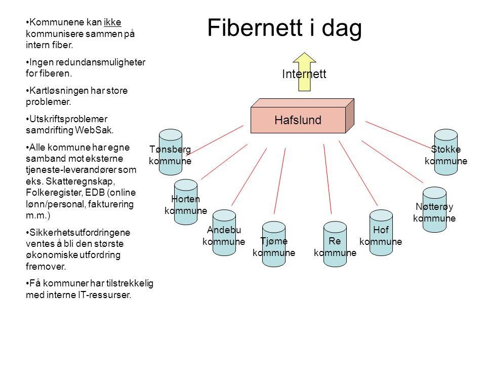 Fibernett i dag Internett Hafslund