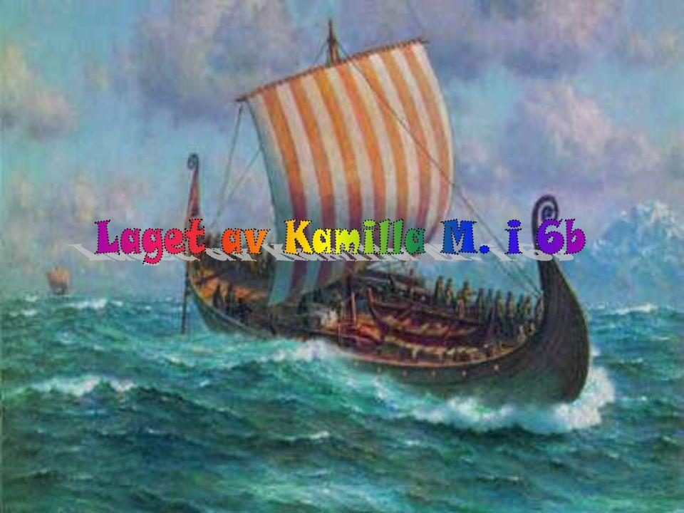 Laget av Kamilla M. i 6b