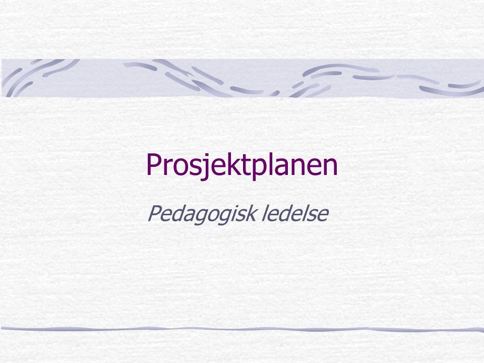 Prosjektplanen Pedagogisk ledelse