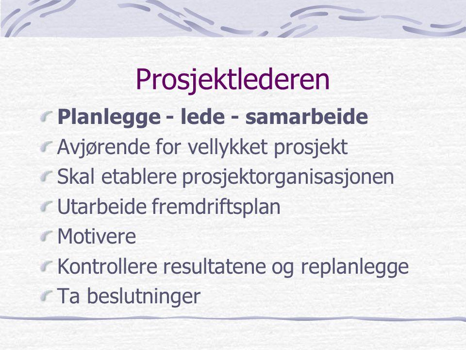 Prosjektlederen Planlegge - lede - samarbeide