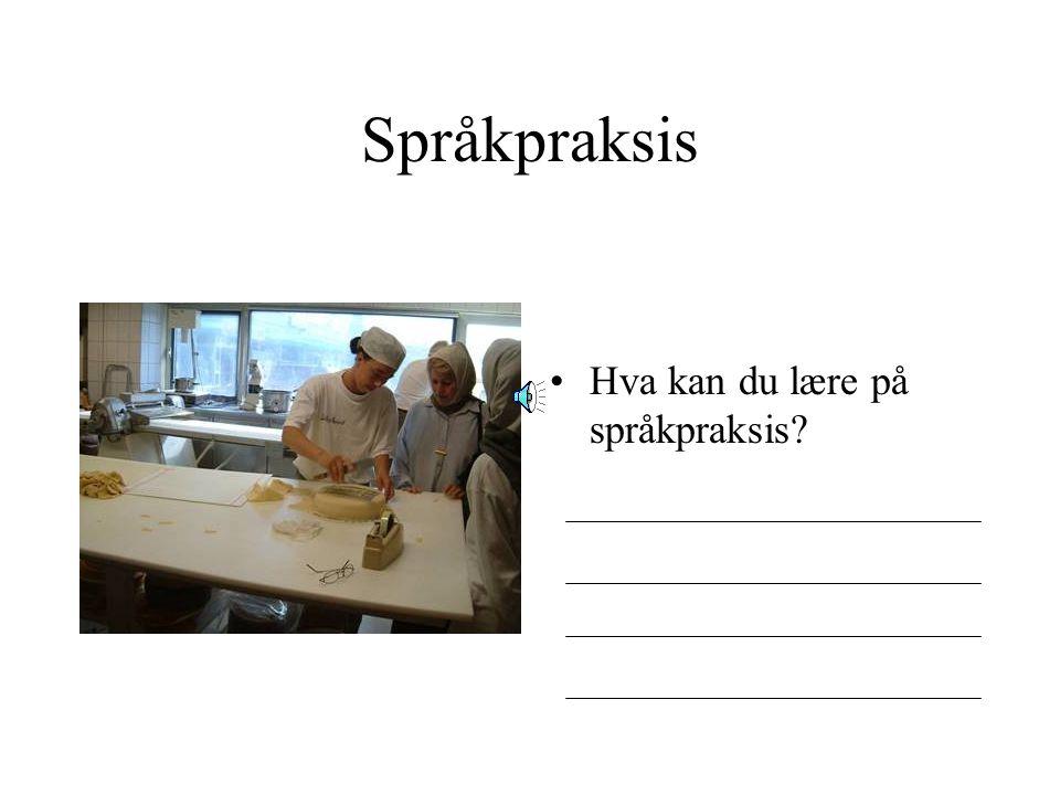 Språkpraksis Hva kan du lære på språkpraksis