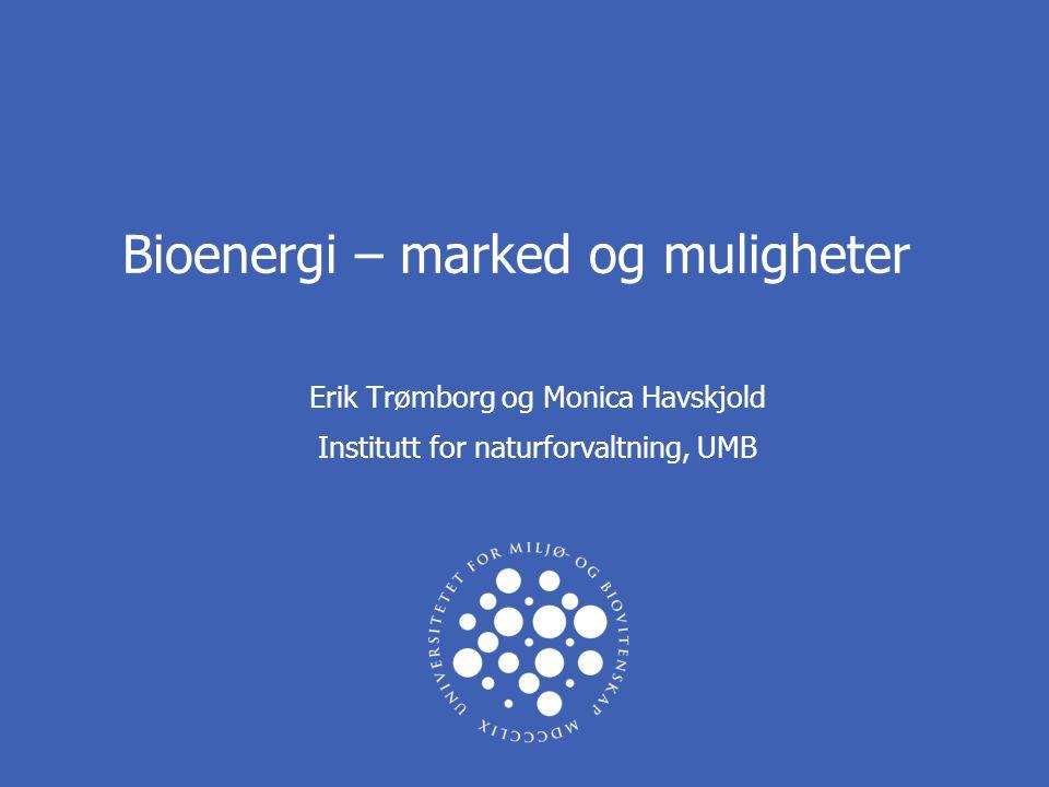 Bioenergi – marked og muligheter