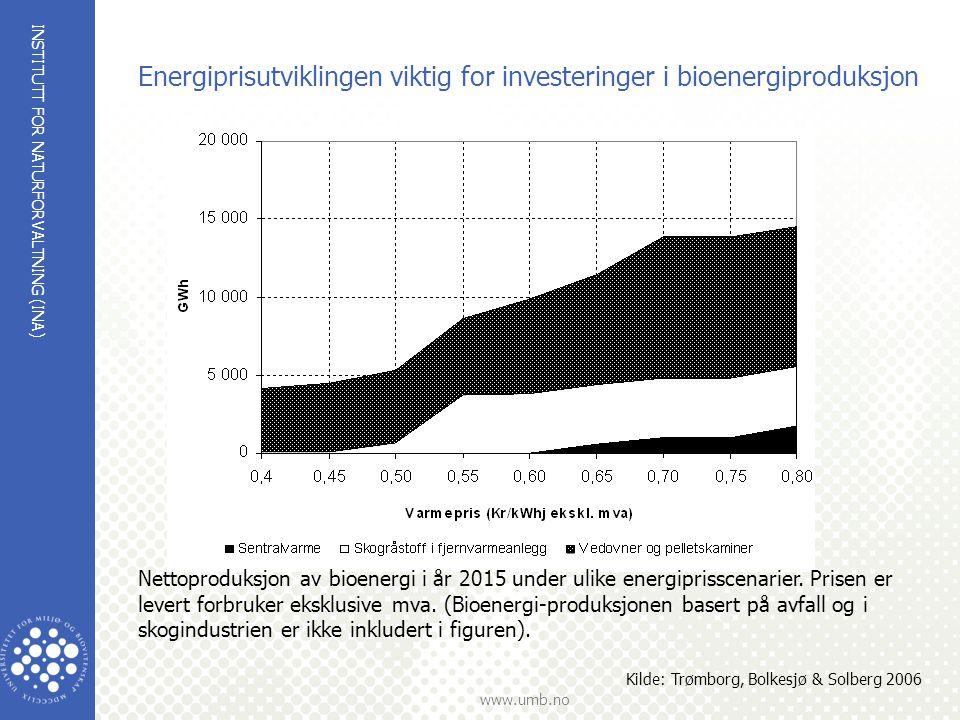 Energiprisutviklingen viktig for investeringer i bioenergiproduksjon