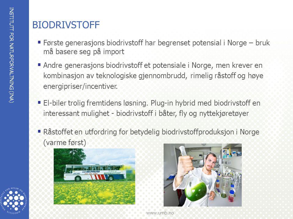 Biodrivstoff Første generasjons biodrivstoff har begrenset potensial i Norge – bruk må basere seg på import.