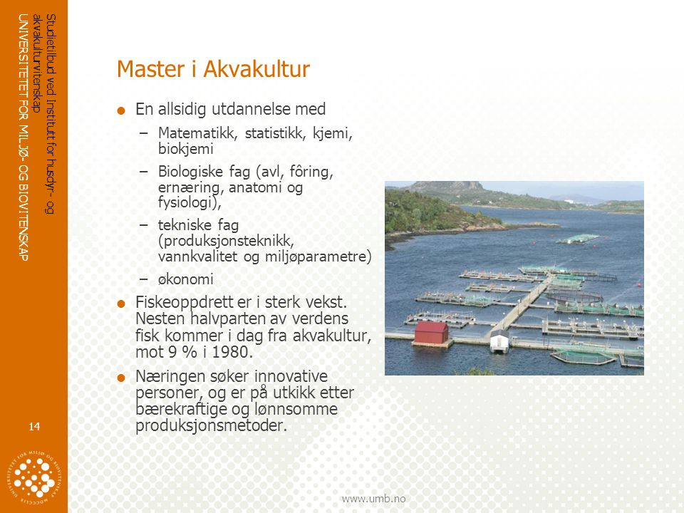 Master i Akvakultur En allsidig utdannelse med