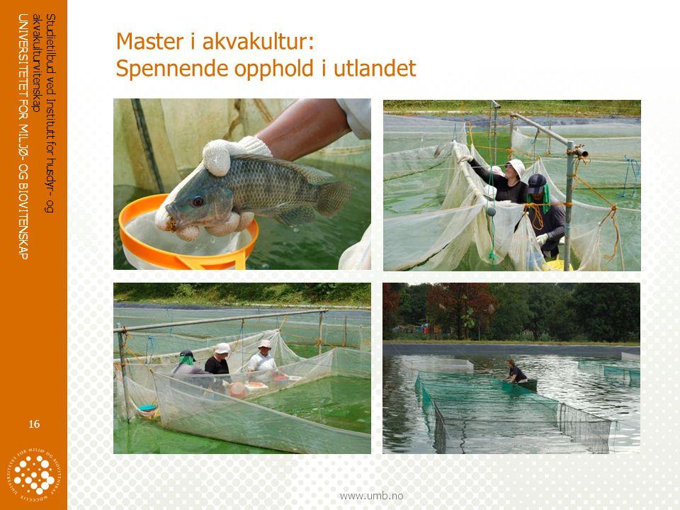 Master i akvakultur: Spennende opphold i utlandet