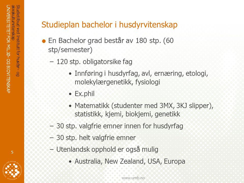 Studieplan bachelor i husdyrvitenskap