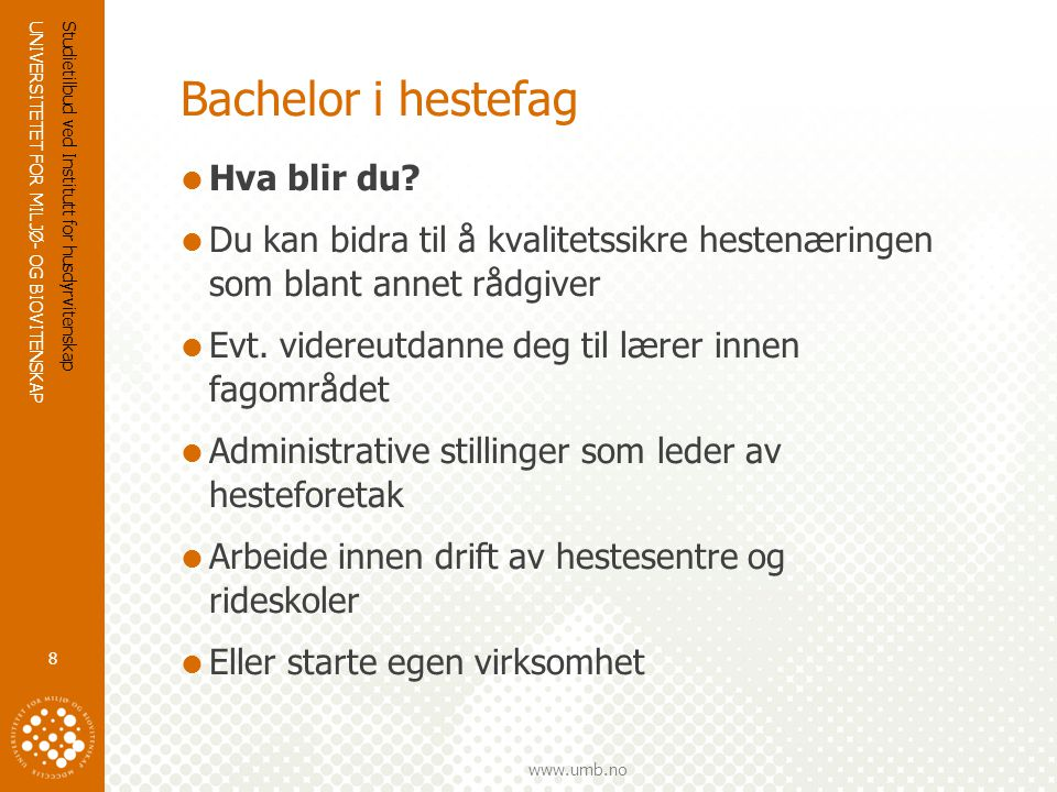 Bachelor i hestefag Hva blir du