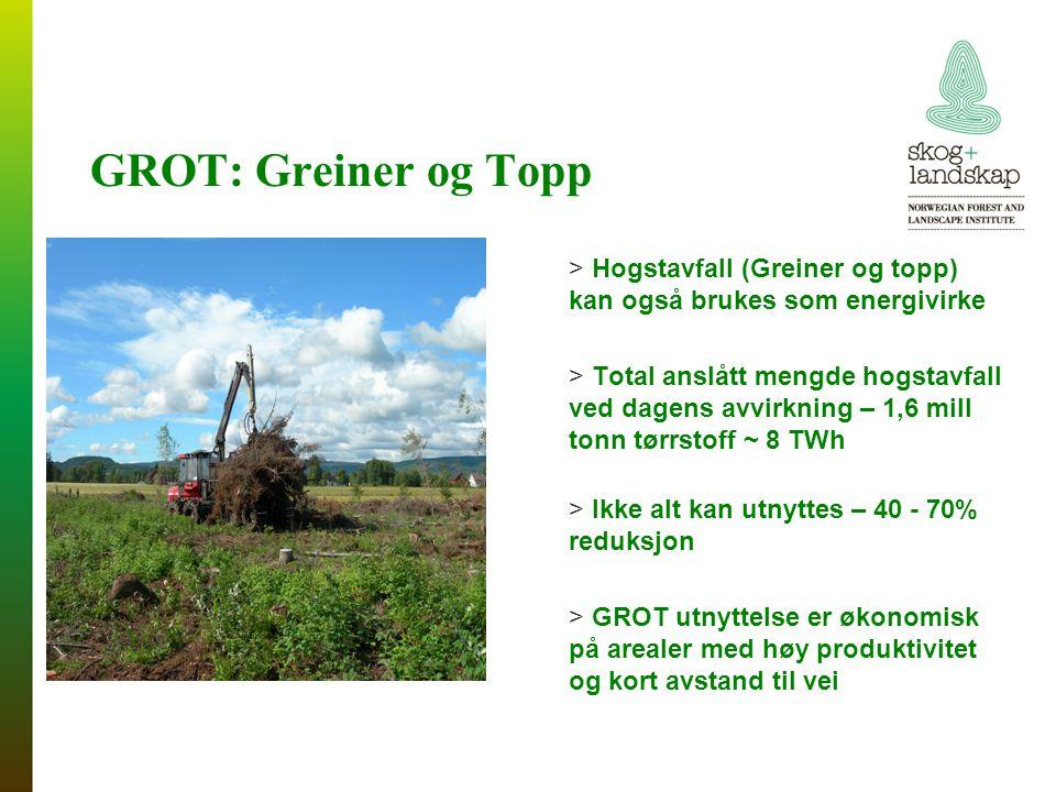 GROT: Greiner og Topp Hogstavfall (Greiner og topp) kan også brukes som energivirke.