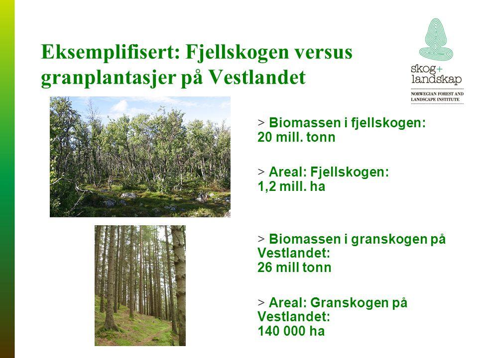 Eksemplifisert: Fjellskogen versus granplantasjer på Vestlandet