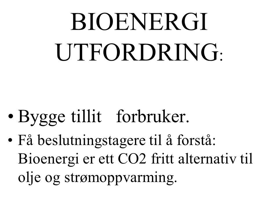 BIOENERGI UTFORDRING: