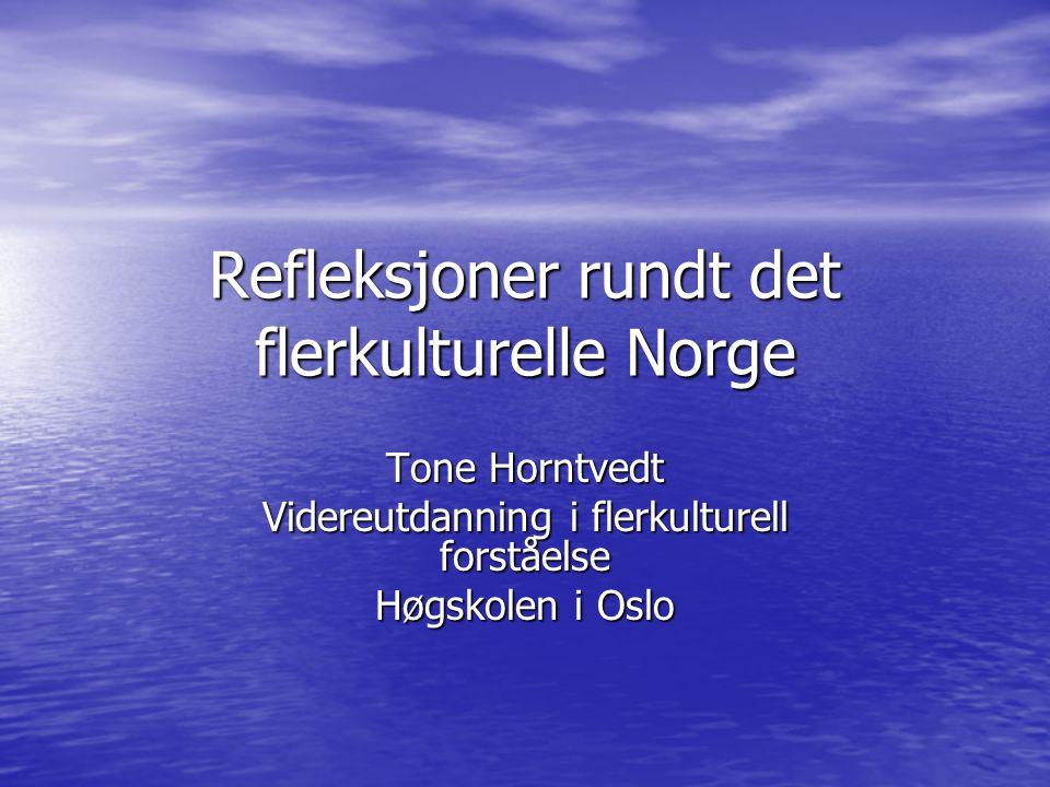 Refleksjoner rundt det flerkulturelle Norge