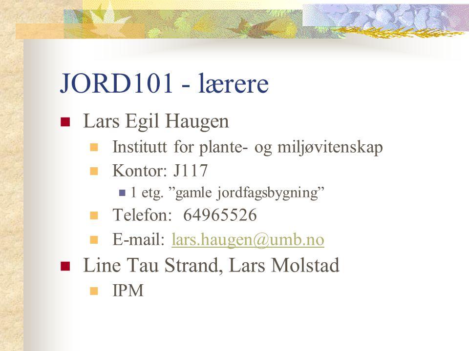 JORD101 - lærere Lars Egil Haugen Line Tau Strand, Lars Molstad
