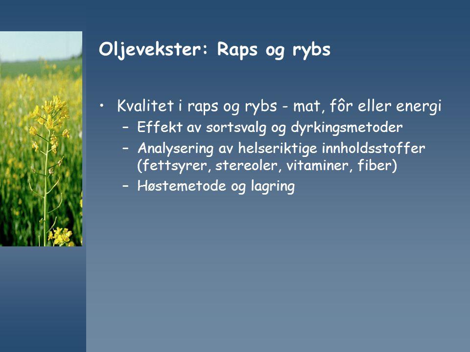 Oljevekster: Raps og rybs