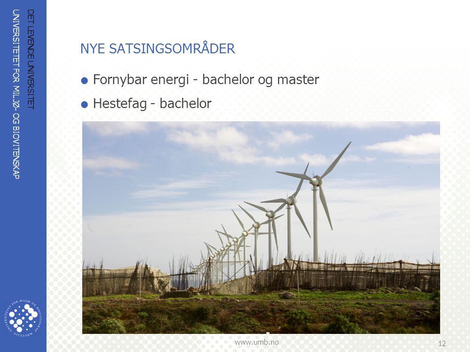 Fornybar energi - bachelor og master Hestefag - bachelor
