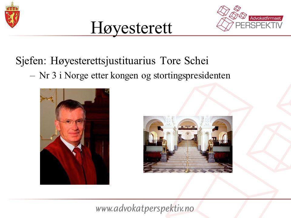 Høyesterett Sjefen: Høyesterettsjustituarius Tore Schei