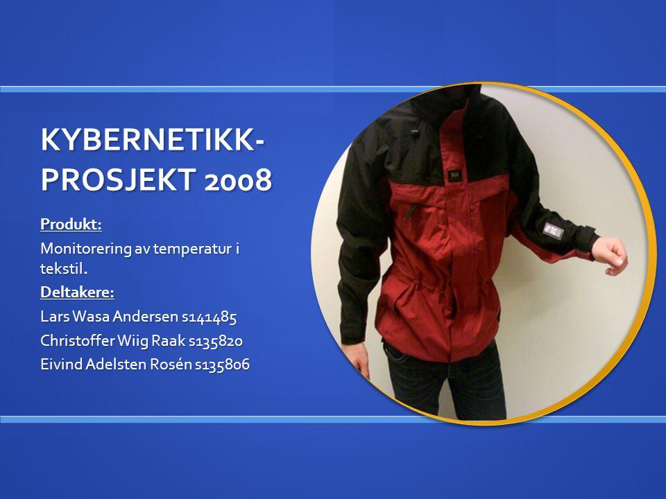 KYBERNETIKK- PROSJEKT 2008