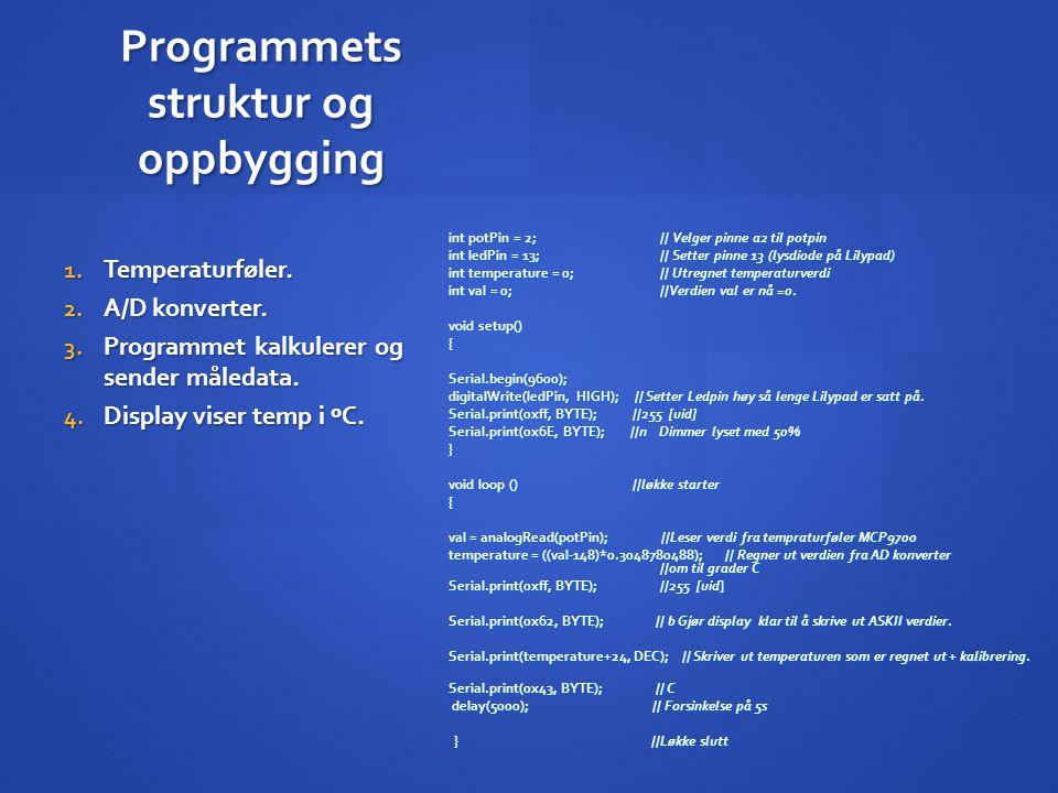 Programmets struktur og oppbygging