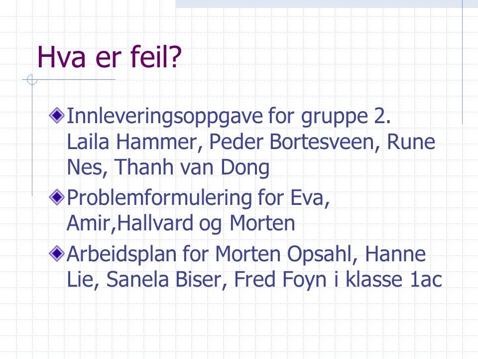 Hva er feil Innleveringsoppgave for gruppe 2. Laila Hammer, Peder Bortesveen, Rune Nes, Thanh van Dong.