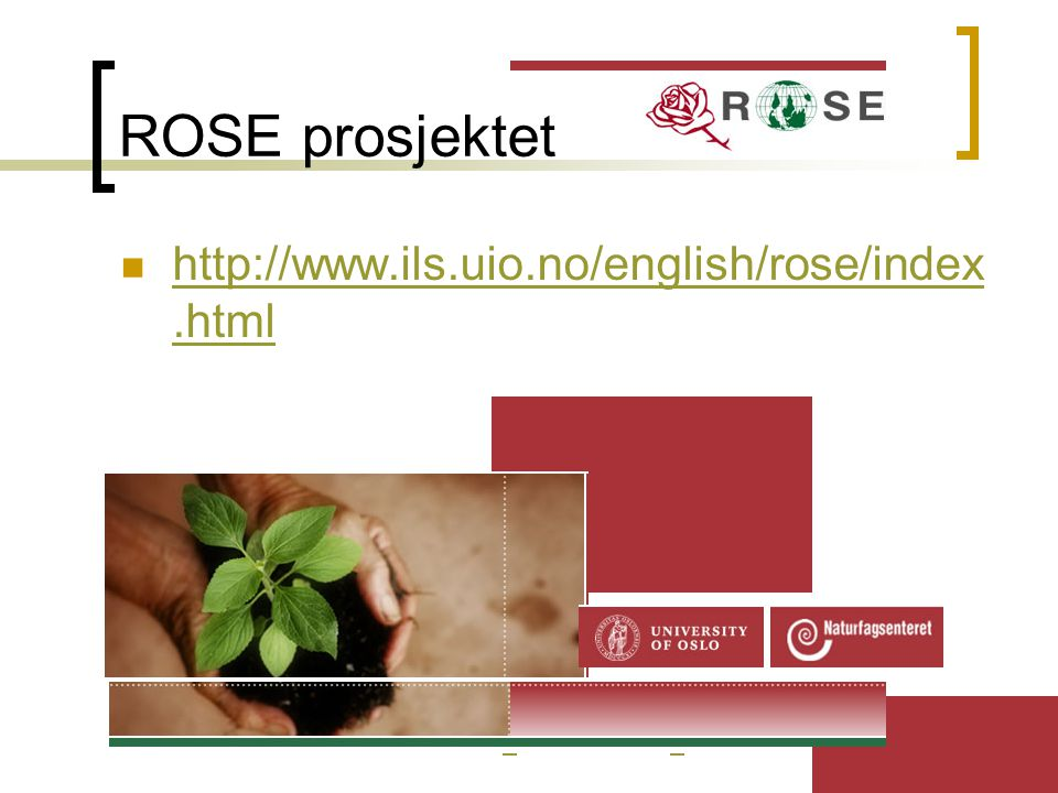 ROSE prosjektet http://www.ils.uio.no/english/rose/index.html