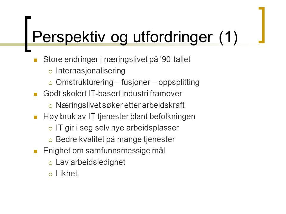 Perspektiv og utfordringer (1)