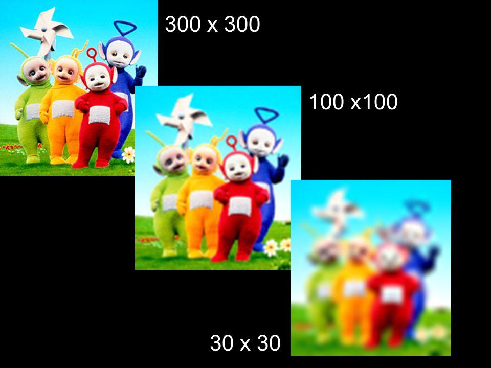 300 x 300 100 x100 30 x 30
