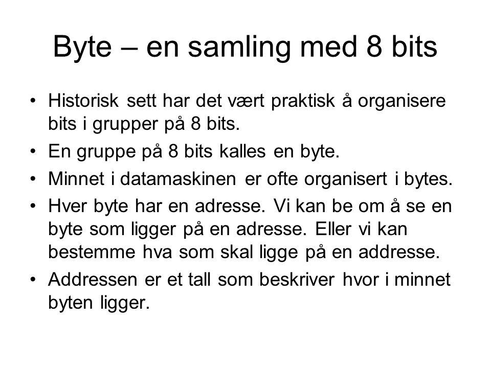 Byte – en samling med 8 bits