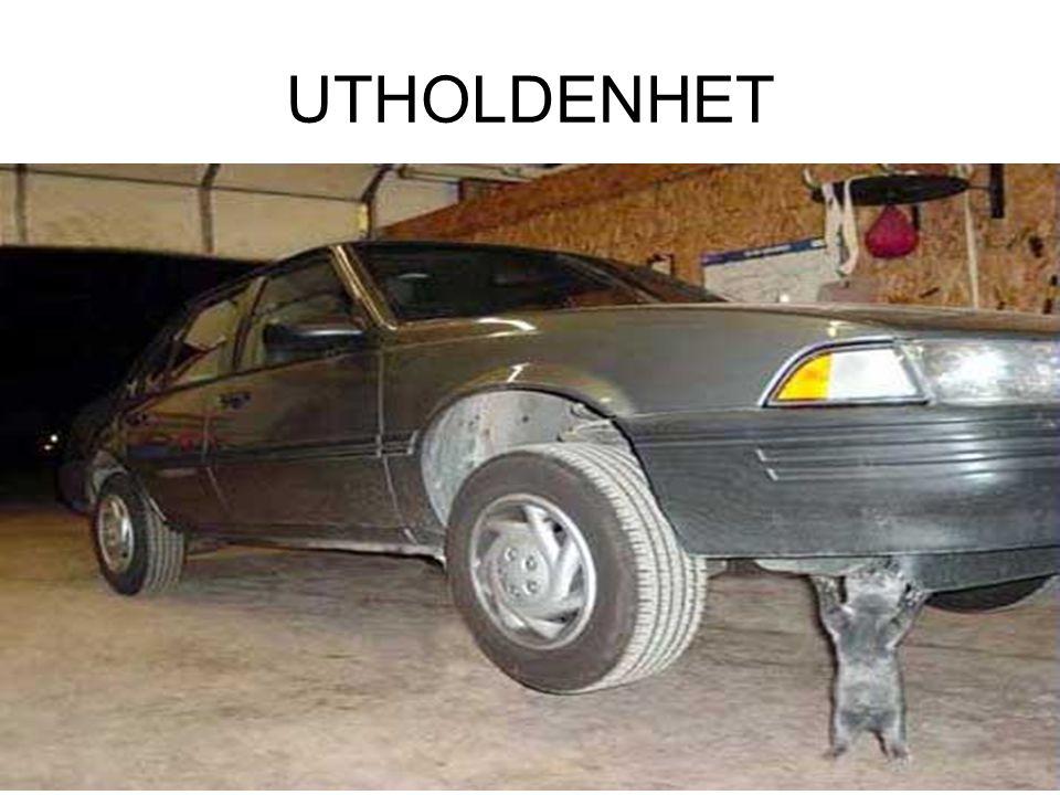 UTHOLDENHET