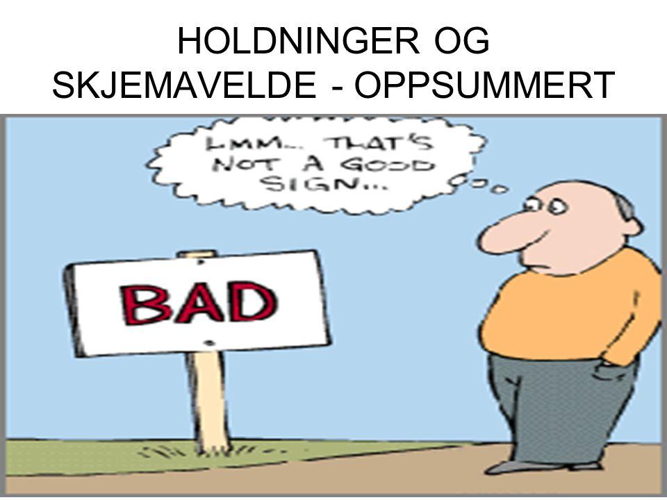 HOLDNINGER OG SKJEMAVELDE - OPPSUMMERT