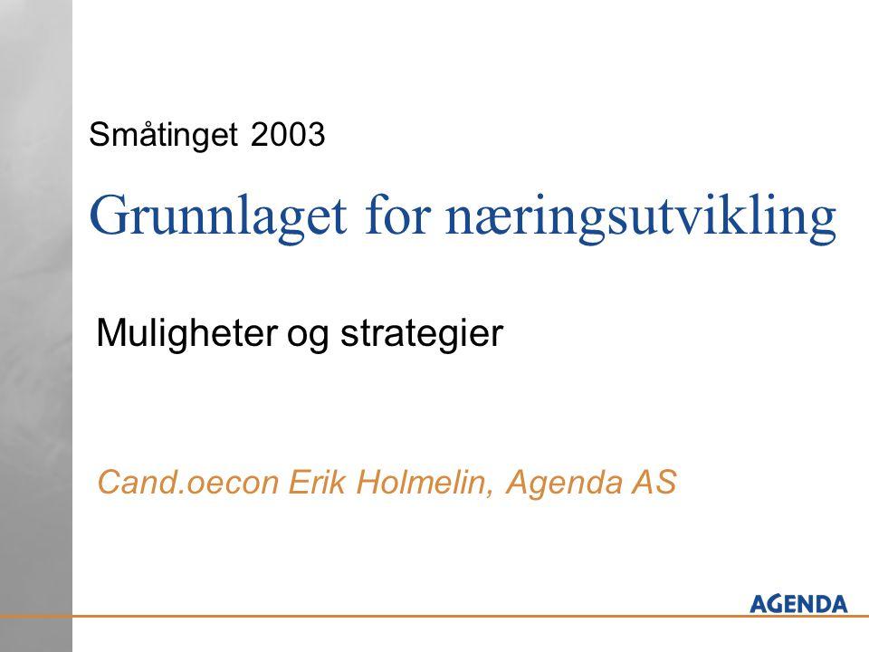 Småtinget 2003 Grunnlaget for næringsutvikling