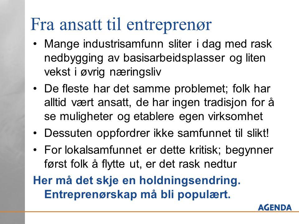 Fra ansatt til entreprenør