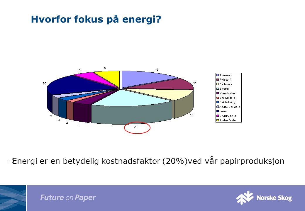 Hvorfor fokus på energi