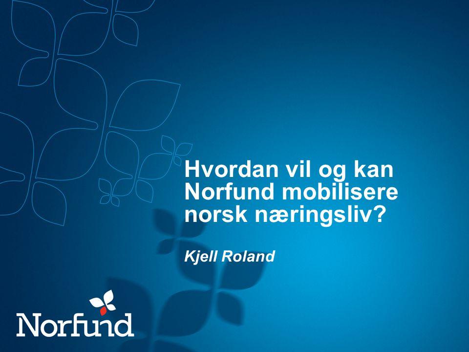 Hvordan vil og kan Norfund mobilisere norsk næringsliv