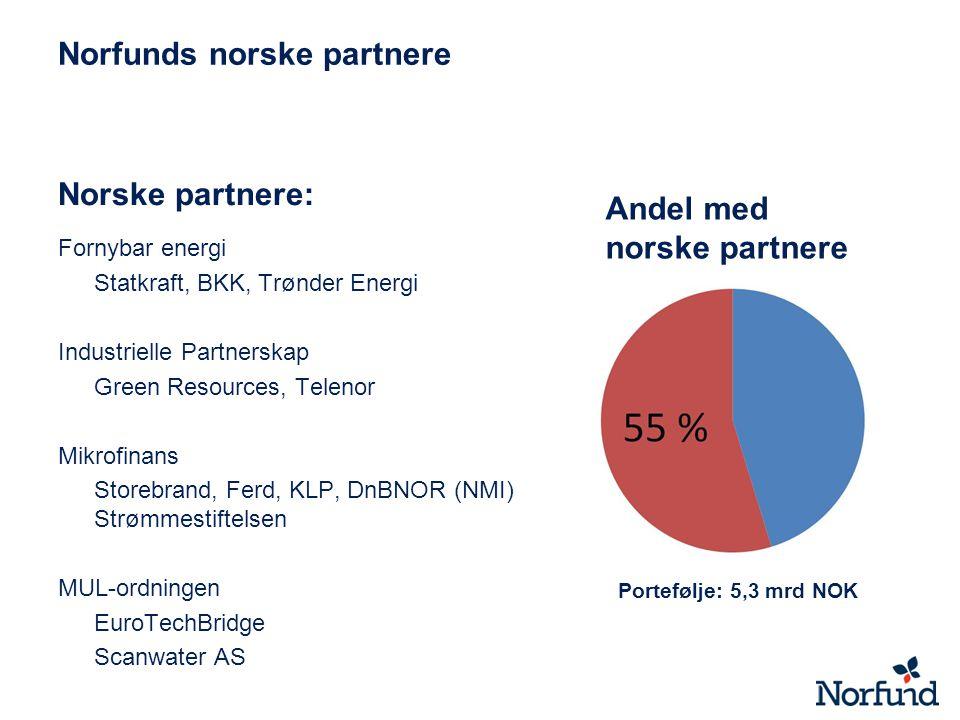 Norfunds norske partnere