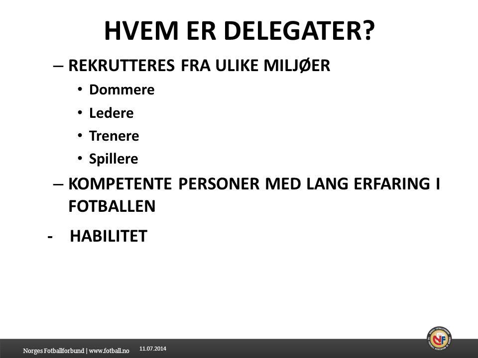 HVEM ER DELEGATER - HABILITET REKRUTTERES FRA ULIKE MILJØER