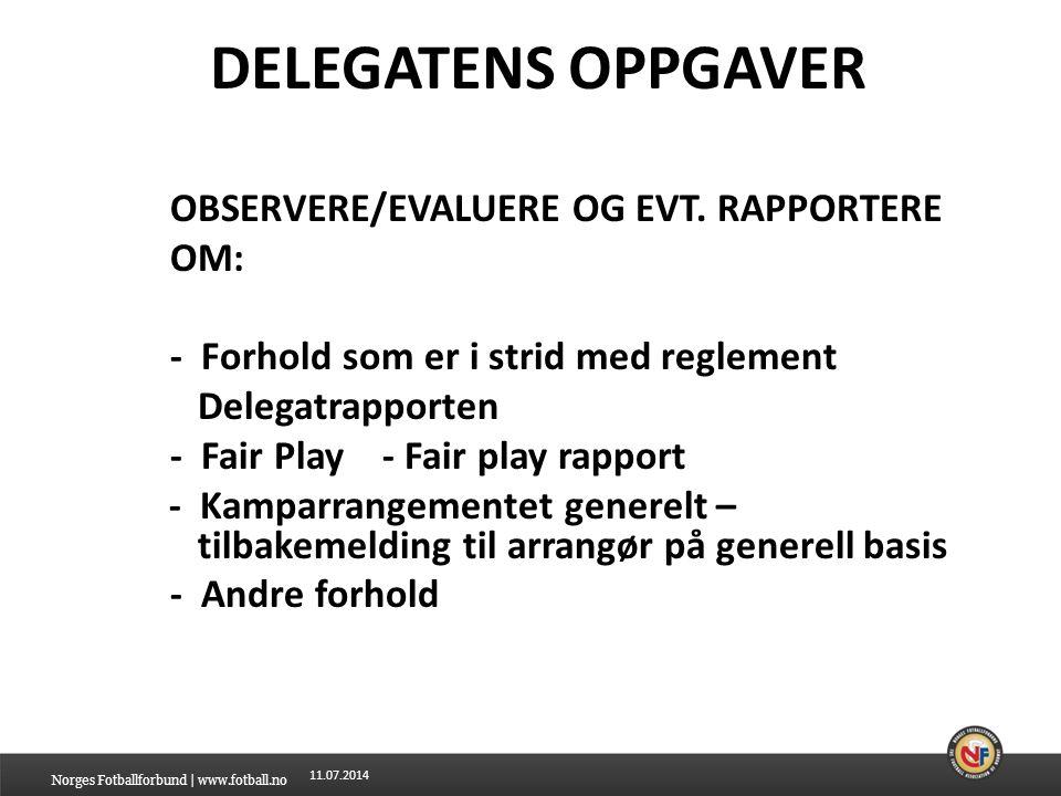 DELEGATENS OPPGAVER OBSERVERE/EVALUERE OG EVT. RAPPORTERE