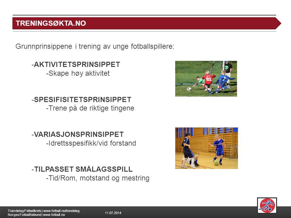 TRENINGSØKTA.NO Grunnprinsippene i trening av unge fotballspillere: AKTIVITETSPRINSIPPET. Skape høy aktivitet.