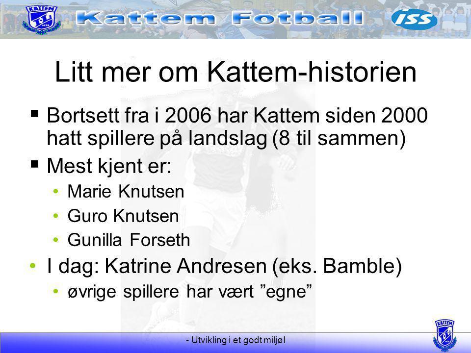 Litt mer om Kattem-historien